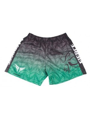 Fierce Turtle Shorts