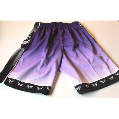 Fierce Shorts Purple